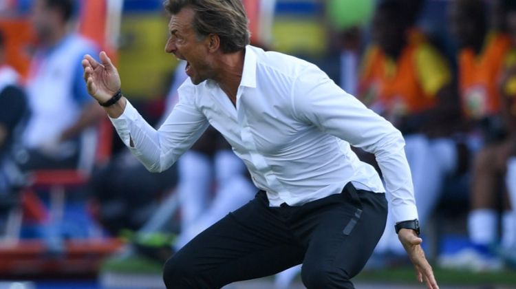 الصورة تتحدث.. رونار يتابع مباراة الكوت ديفوار ضد جنوب إفريقيا